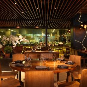 Restaurant Review – NovikovAsian